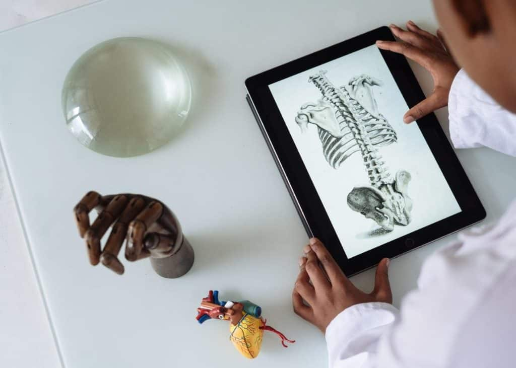 Photo of a doctor studying some anatomy diagrams